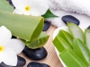 Aloe contro le scottature